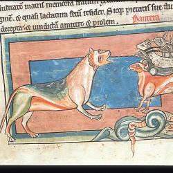Пантера (Рукопись Британской библиотеки MS Harley 4751, fol. 4r)