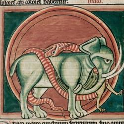 Битва дракона со слоном (Рукопись Британской библиотеки MS Harley 4751, fol. 58v)