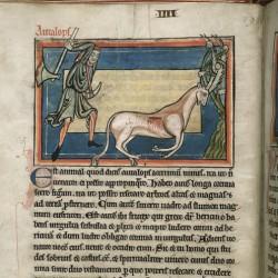 Охотник и анталоп (Рукопись Британской библиотеки MS Harley 4751, fol.5v)