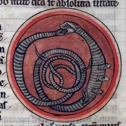 Гадюка (Рукопись Британской библиотеки MS Harley 4751, fol. 60r)