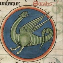 Сциталис (Рукопись Британской библиотеки MS Harley 4751, fol. 62r)