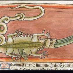 Гидрус проникает в крокодила (Рукопись Британской библиотеки MS Harley 4751, fol. 62v)