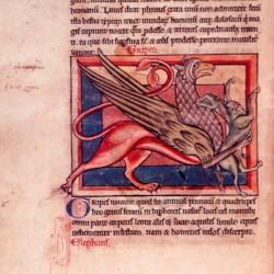 Грифон (Рукопись Британской библиотеки MS Harley 4751, fol. 7v)