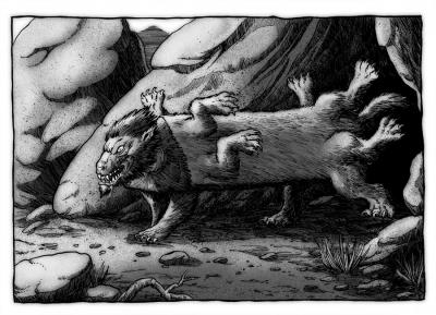 Центральноамериканский винтоссер. Иллюстрация Ричарда Свенссона