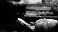 """Возникновение кайбё в фильме """"Черные кошки в бамбуковых зарослях"""""""