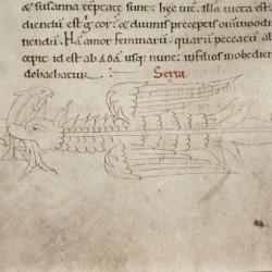 Серра. Рукопись Бодлеянской библиотеки (MS Laud. misc.247, fol.141v.)