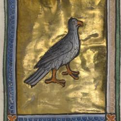 Феникс. Рукопись музея Гетти в Лос-Анджелесе (MS. Ludwig XV 3, fol.38r.)