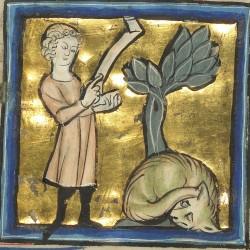 Аспид. Рукопись музея Гетти в Лос-Анджелесе (MS. Ludwig XV 4, fol.97v.)