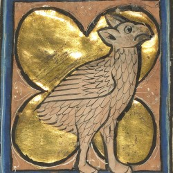 Ассида (страус). Рукопись музея Гетти в Лос-Анджелесе (MS. Ludwig XV 4, fol.98r.)