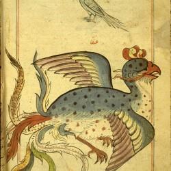 Симург. Рукопись Национальной библиотеки медицины, Бетесда, США (MS P 2, fol. 187v.)