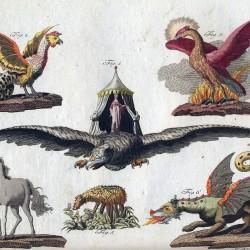 Василиск, феникс, рух, единорог, баранец и дракон на иллюстрации Фридриха Джастина Бертуха