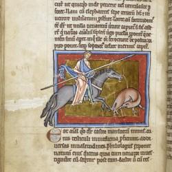 Бобёр. Рукопись Британской библиотеки (Royal 12 C XIX, fol. 10v)