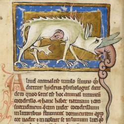 Гидрус убивает крокодила. Рукопись Британской библиотеки (Royal 12 C XIX, fol. 12v.)