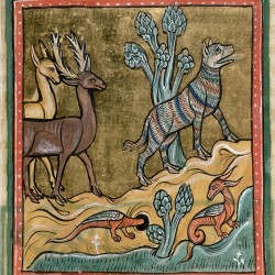 Пантера и дракон. Рочестерский бестиарий (Royal 12 F XIII, fol. 9r.)