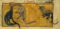Гадюка (Рукопись Британской библиотеки Sloane 278, fol. 51r)