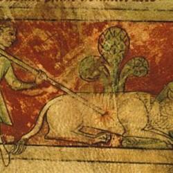 Единорог. Рукопись Британской библиотеки (MS Sloane 3544, fol. 4r.)