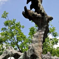 Вавельский дракон. Скульптура в Кракове