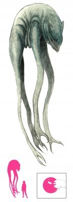 "А-Ми-Кук. Иллюстрация с сайта ""A Book of Creatures"""