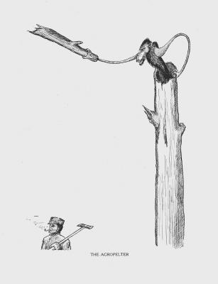 """Агропельтер. Иллюстрация Кёр Дю Буа из книги """"Устрашающие твари промысловых лесов"""""""