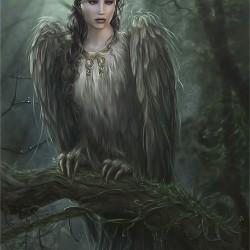 Алконост. Рисунок Ларисы Дедковой, 2005