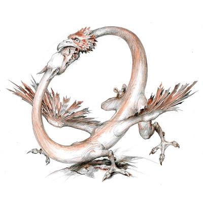 Амфисбена (Amfisbena). Иллюстрация Дениса Гордеева к бестиарию Сапковского