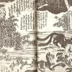 Нэкомата похищает труп из могилы. Книжная иллюстрация
