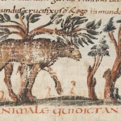Анталоп. Рисунок из рукописи Городской библиотеки Берна (Cod. 318, fol.18r)