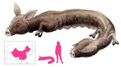 """Бинфэн. Иллюстрация с сайта """"A Book of Creatures"""""""