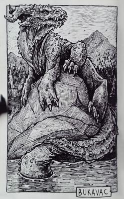 Букавац. Иллюстрация Дарека Кшака (DK13Design)