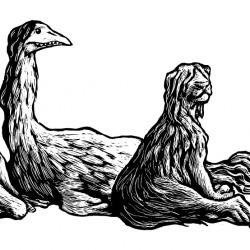 Буньипы. Иллюстрация Мерли Инсинга
