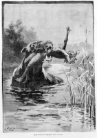 """Буньип. Иллюстрация из """"Illustrated Australian news"""" (1890)"""