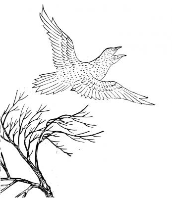 """Бийняо. Рисунок из """"Каталога гор и морей"""" (Шань Хай Цзин)"""