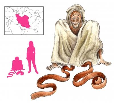 "Давалпа. Иллюстрация с сайта ""A Book of Creatures"""