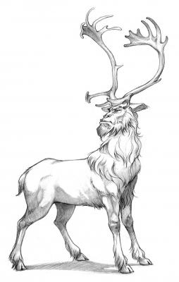 Иджирак (Ijiraq). Иллюстрация Евы Вайдерманн