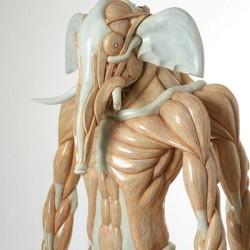 Ганеша. Анатомическая скульптура Масао Киношиты