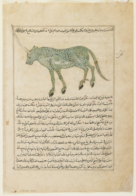 """Аль-каркадан. Иллюстрация к трактату Аль-Казвини """"Чудеса создания и чудеса существ и странных существующих вещей"""""""