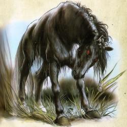 """Келпи. Иллюстрация из книги """"Мифические существа"""""""