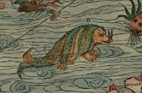 Морское чудовище (возможно, хафгуфа) на морской карте Олафа Магнуса (Olaus Magnus)