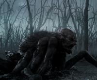 """Кикимора болотная. Кадр из сериала """"Ведьмак"""" (2019)"""