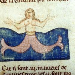 Сирена (Рукопись Моргановской библиотеки Manuscript. M.459, fol.8r)