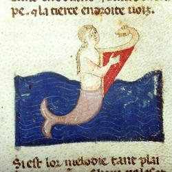 Сирена, играющая на арфе. Рукопись Моргановской библиотеки Manuscript. M.459, fol.8r