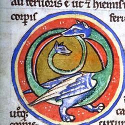 Амфисбена (Рукопись Моргановской библиотеки в Нью-Йорке Manuscript. M.81, fol. 85v.)