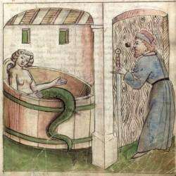 Мелюзина. Изображение из средневекового манускрипта