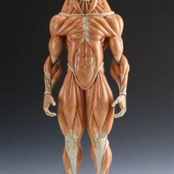 Минотавр. Анатомическая скульптура от Масао Киношиты