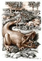 Северный дракон. Иллюстрация Гюнтера-Фридриха Рейндорфа к сказке Ф.Крейцвальда