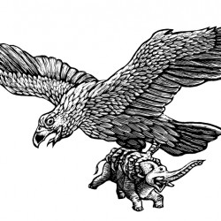 Птица Рух. Иллюстрация Мерли Инсинга