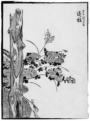 Сакабасира. Иллюстрация Ториямы Сэкиэна