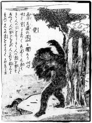 Сатори. Иллюстрация Ториямы Сэкиэна