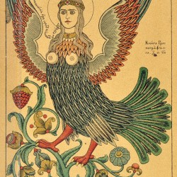 Райская птица сирин. Рисунок Ивана Билибина