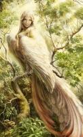 Сирин. Иллюстрация Елены Ермаковой